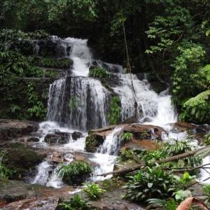 Foto de La Montañita, Caquetá