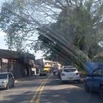 Foto de Puerto Tejada, Cauca
