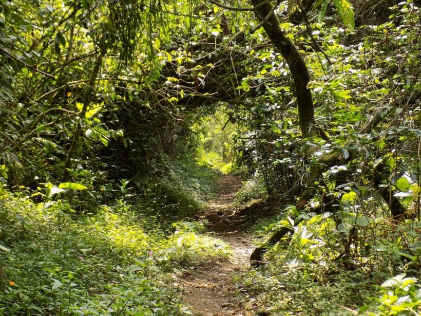 Foto de Amagá, Antioquia en Colombia