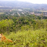 Foto de Agrado, Huila